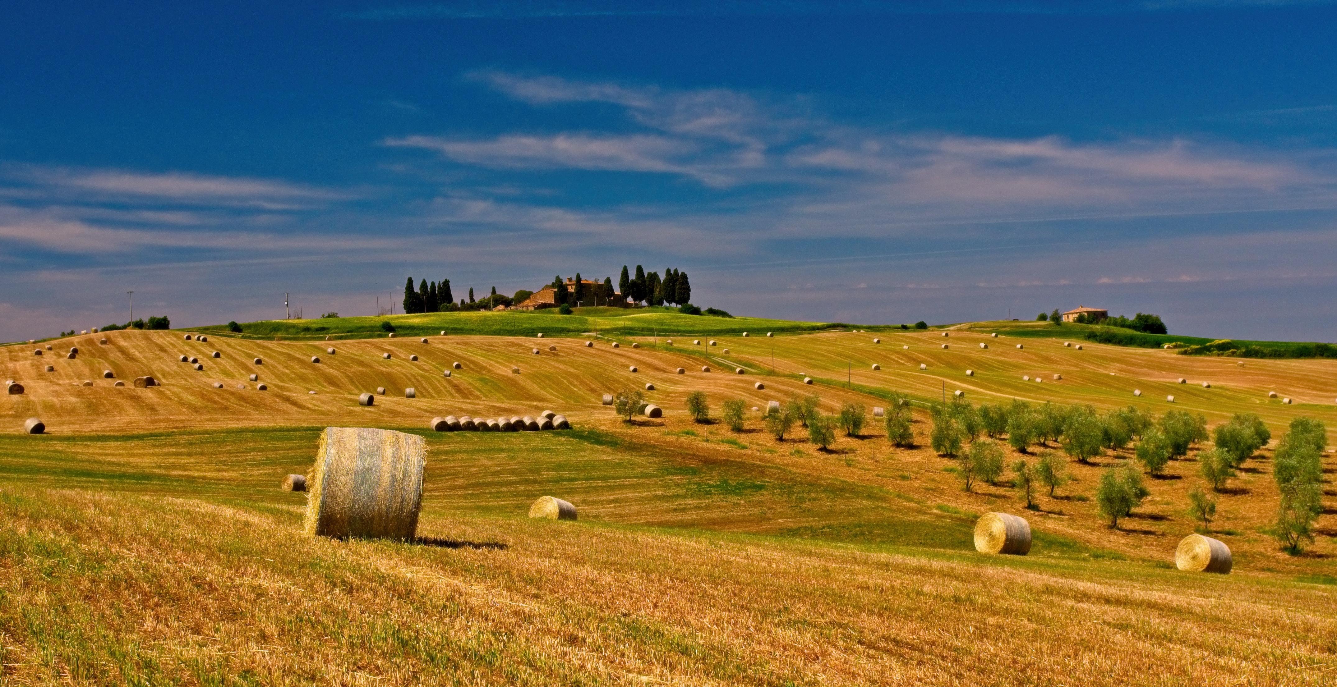 Zemědělství je u nás stále důležité